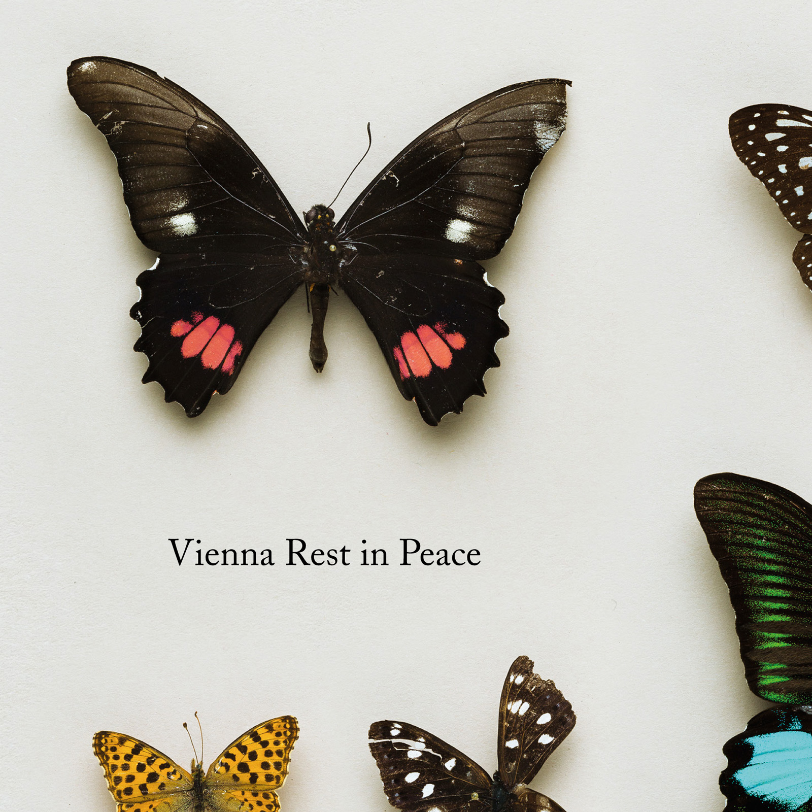 CD-trauer003-Vienna_Rest_in_Peace-1600px